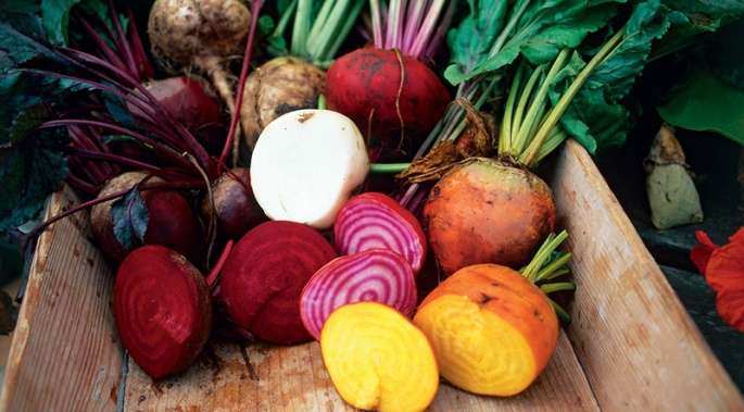 root vegetables, roots, beets, turnips, parsnips, radishes, celeriac, rutabagas, zone 4b, zone 4