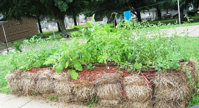straw bale, straw bale garden, strawbale garden, strawbale gardening, straw bale planter