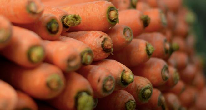 carrots, root vegetables, roots, orange carrots