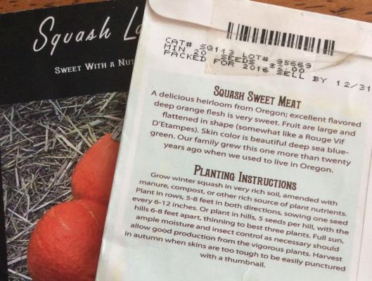 squash, squash seeds, heirloom squash, cucurbits, organic squash, Baker Creek