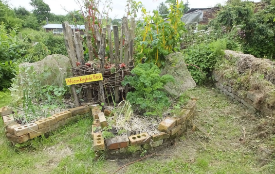 keyhole garden, keyhole garden bed, keyhole bed, permaculture, keyhole permaculture garden bed, notched garden bed, raised keyhole garden