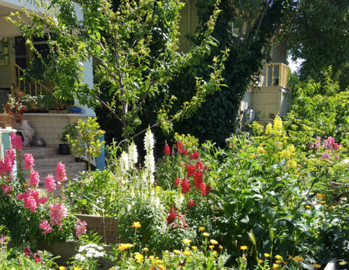 Angelinas-Garden