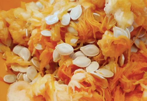pumpkin seeds, squash seeds, saving pumpkin seeds, saving seeds
