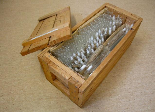 Seed-Storage-box