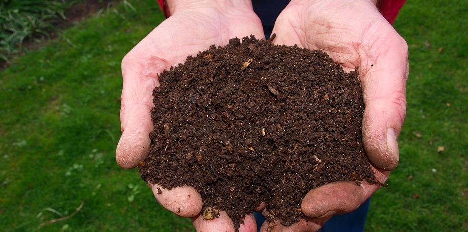 compost, compost tea, brewing compost tea, how to make compost tea