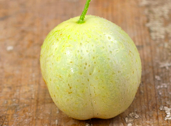 crystal apple cucumber