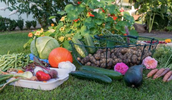Garden Produce.png