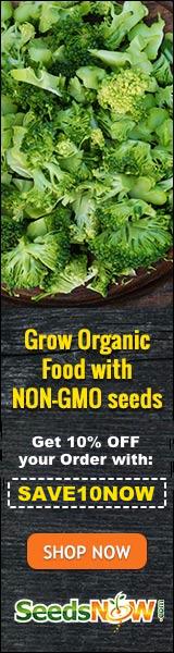 10% Off SeedsNow
