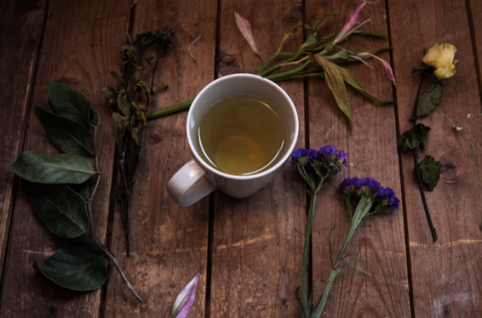 Herbal Tea Plants